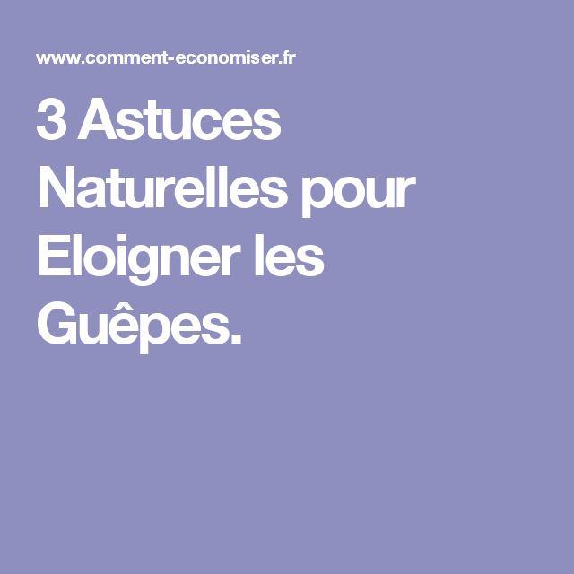 3 Astuces Naturelles pour Eloigner les Guêpes.