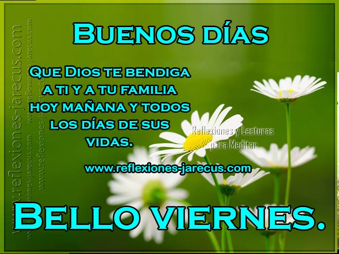Cute Good Morning Quotes In Spanish : Best images about saludos de buenos dias buenas