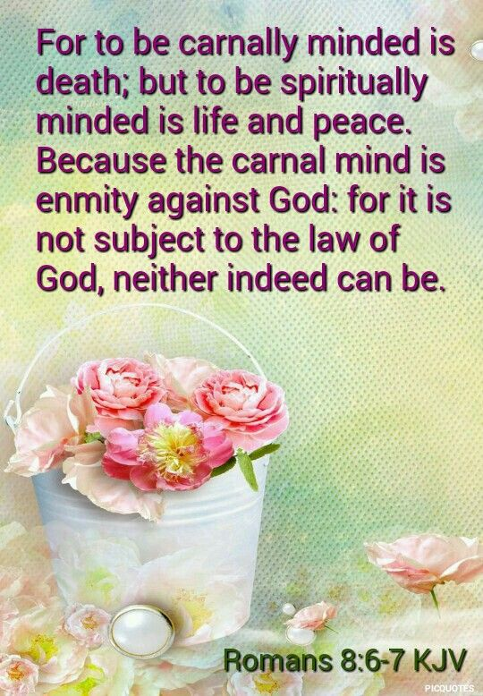 Romans.8:6-7.kjv For to be carnally minded is death; but to be spiritually minded is life and peace. Because the carnal mind is enmity against God: for it is not subject to the law of God, neither indeed can be.