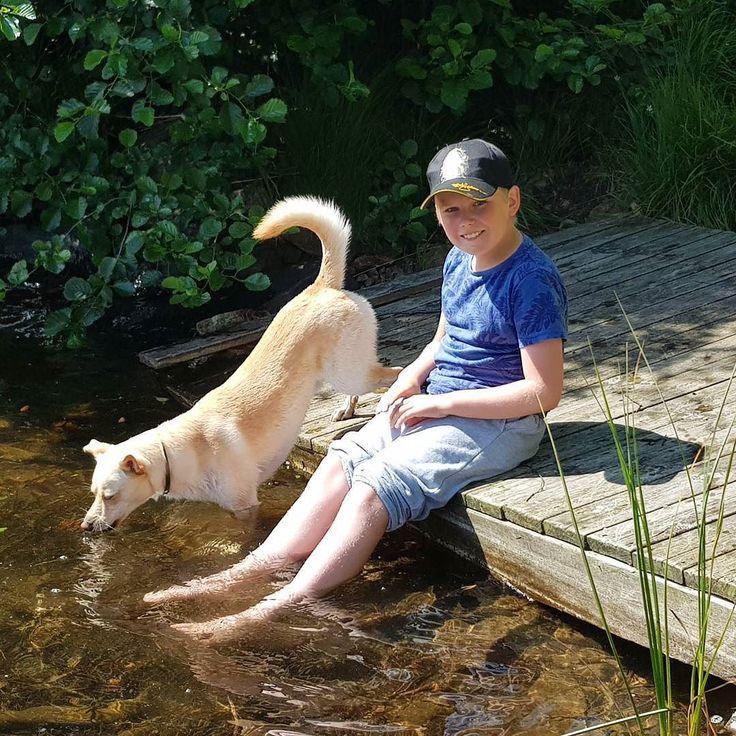 En deilig sommerdag med geocaching  #geocaching #sommer #barnebarn  #oliverthedog #avisenagder #caching