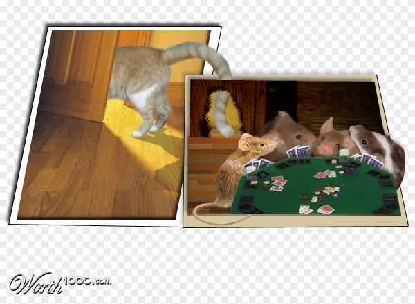 (2014-01) Når katten er ude, spiller musene på bordet