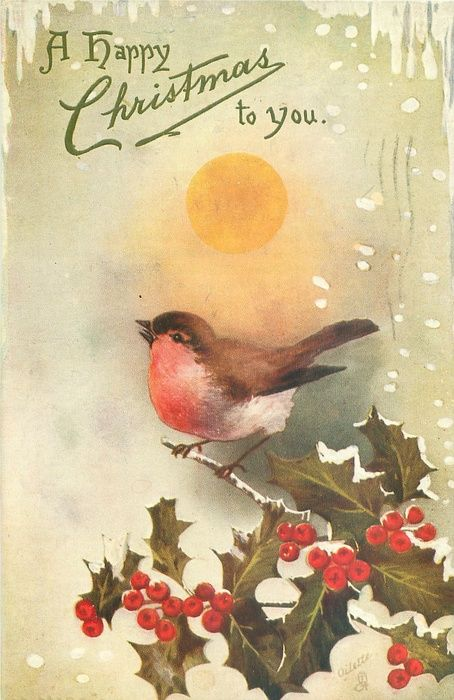 A happy Christmas to you - bird