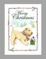 Soft Coated Wheaten Terrier Dog Christmas Cards, Box of 16 Cards & 16 Envelopes