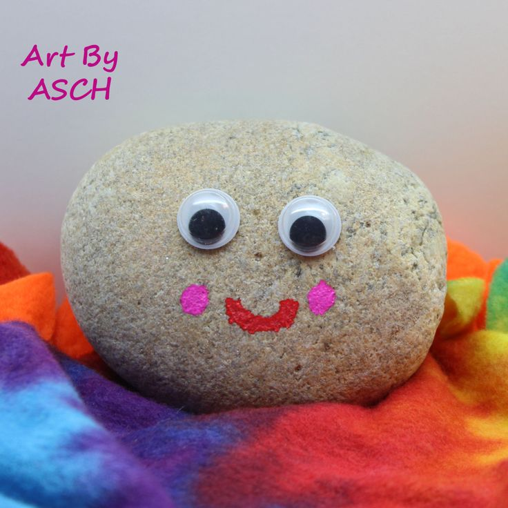 Pet Rock with bed box training certificate, pet stone, gag gift - training certificate