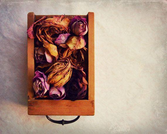 Nostalgic Photography Dried Flowers Dead by VictoriaEnglishCharm