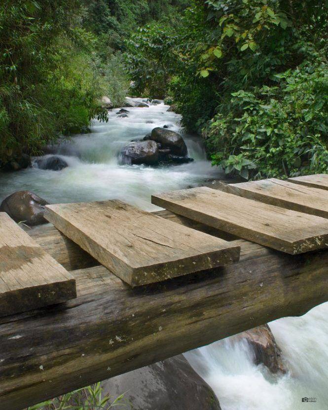 An old wood bridge connects the rural ways of the Consacá municipality through the #AzufralRiver.  Un viejo puente de madera conecta a los caminos rurales del municipio de Consacá a través del #RíoAzufral.  @idpacifico @idcolombia @idlatino @pasto_narino_colombia @san_juan_de_pasto_narino @narinoturismo @corazon_de_pasto_ @waycorigen @pasto_narino @turismonarino @yo.soy.pasto @turismopasto @estoespasto @jovensteven @gobernaciondenarino @greatcolombia @colombia_greatshots   Lugar  #Colombia…