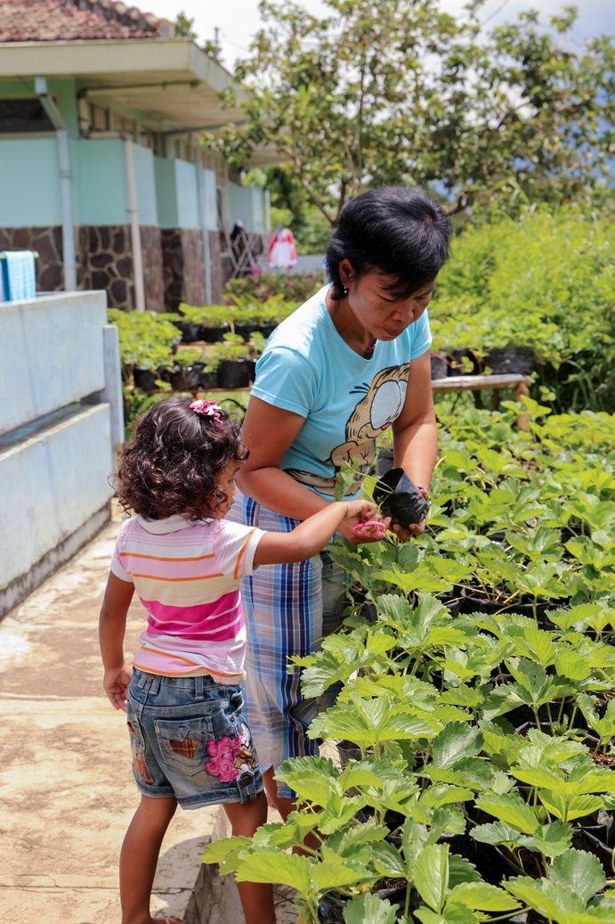 berkebun bersama ibu ..