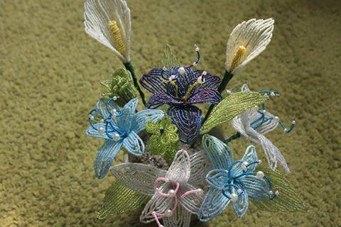 Legújabb virágaim