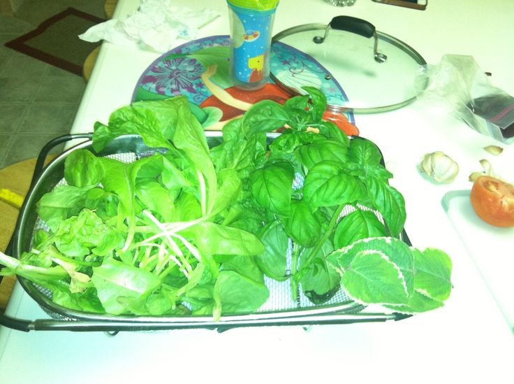 Salad 25' from the kitchen
