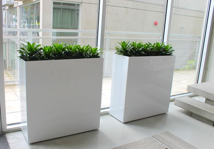 Gloss white modern planters. Fully equipped with Ollie Plant Sipper and Ollie EZ Fill-ter bags. A total system..