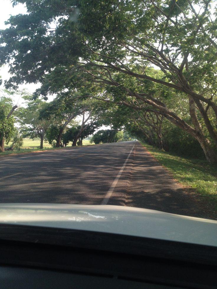Paisajes colombia vía Barranquilla-Sincelejo