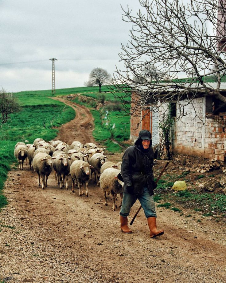 Anadolu'dan Fotoğrafı gönderen: Aynur Yardımcı