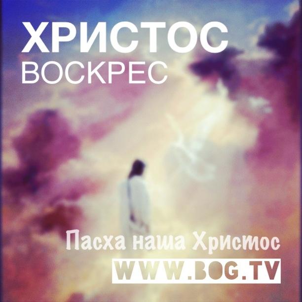 Христос Воскрес! Радостная весть! Он живой. #ПоговорисБогом ❤ Богтв