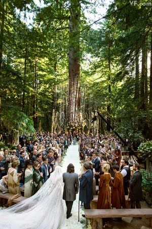 Photos: All the Details of Sean Parker's Lavish Big Sur Wedding | Vanity Fair -- THEY GOT MARRIED IN THE REDWOOD FORREST. My dream, everyone.