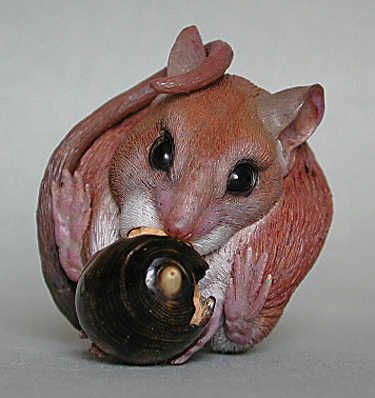 "A netsuke of a mouse eating an acorn. (Netsuke) Mouse is manzanita root wood with oil paints and cowhorn and water buffalo horn inlays. Acorn is fossilized Alaskan coral (shell) and maple wood with oil paints (meat). Tomobako is two stylized leaves made of walnut wood with oil paint and cowhorn inlays. Length of netsuke: 2 1/8 "" Signed: MK (Matt Kowollik): A netsuke of a mouse eating an acorn. (Netsuke) Mouse is manzanita root wood with oil paints and cowhorn and water buffalo horn inlays. Acorn is fossilized Alaskan coral (shell) and maple wood with oil paints (meat). Tomobako is two stylized leaves made of walnut wood with oil paint and cowhorn inlays. Length of netsuke: 2 1/8 "" Signed: MK (Matt Kowollik)"