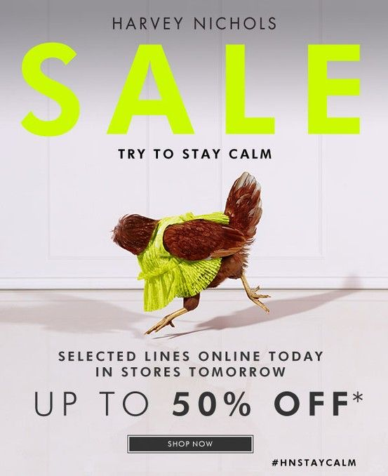 HN Summer Sale 2013