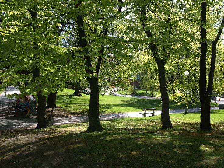 Vasapark in summer