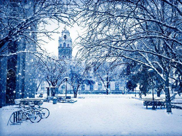 Texas Tech Campus in a blanket of snow!  So pretty!