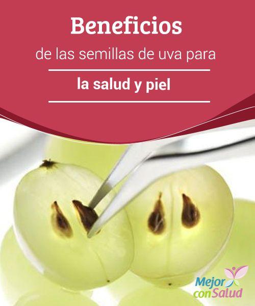Beneficios de las semillas de uva para la salud y piel ¿Qué haces con las semillas de uva? ¿Eres de los que las tiran o las comes con la fruta? Mucha gente opta por desecharlas por su sabor amargo. Esta vez te queremos dar algunas razones para consumirlas.