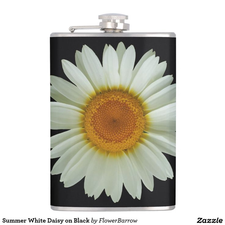 Summer White Daisy on Black Hip Flask