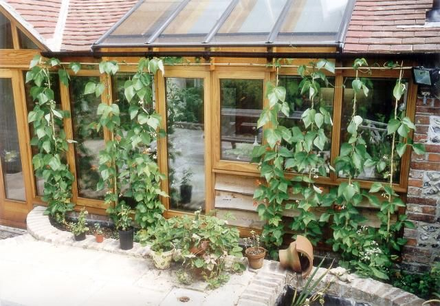 #permaculture. it would be great to see every house hold doing one thing using permaculture principles. to make them healthier, happier and use less fossil fuels