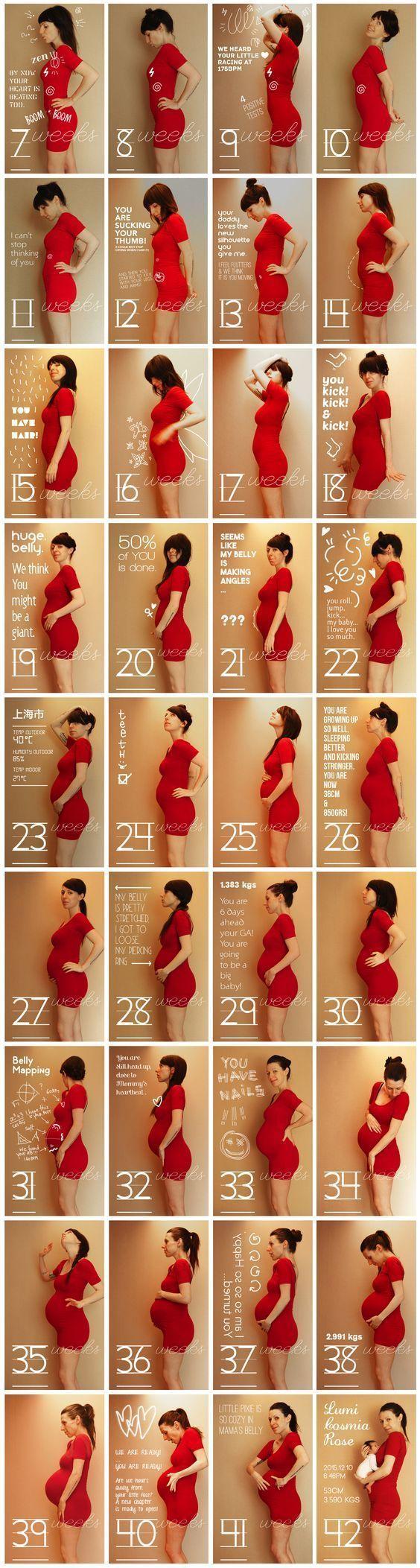 #maternité #bellyprogression   – Baby/Schwangerschaft – #BabySchwangerschaft #b…