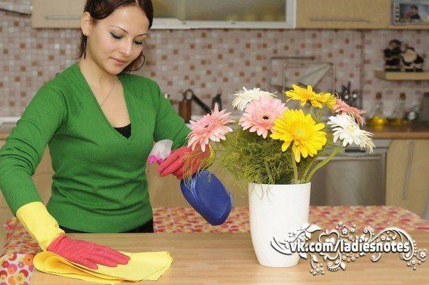 Кухонная эко-находка! Чудо-спрей для чистки кухонных поверхностей!  Берем дистиллированную воду – 1 стакан. В принципе можно взять и обычную. С дистиллированной средство будет дольше храниться - Полстакана водки   - Полстакана уксуса  - Пол чайной ложки эфирного масла сладкого апельсина (оно хорошо растворяет жир).  Для аромата можно добавить еще половина чайной ложки вашего любимого эфирного масла