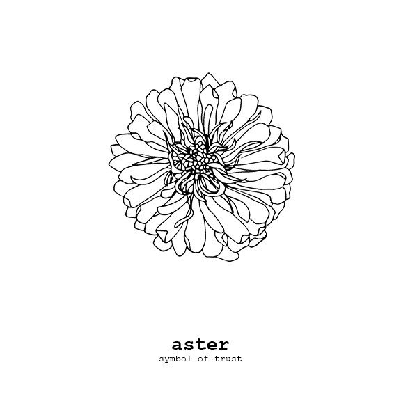 Aster, symbol of trust. The perfect petite card to let a trustworthy friend know…