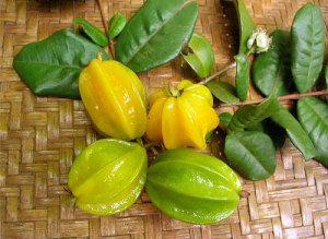 Pitangatuba Típica da restinga do estado do Rio de Janeiro, a pitangatuba é daquelas frutas docinhas e azedinhas ao mesmo tempo, e dá em uma 'árvore' tipo arbusto. O incrível da pitangatuba, além do gosto excepcional (que não carrega aquele amarguinho característico da pitanga), é o tamanho – algumas podem alcançar até 7cm – e a sua suculência, dado que ela só tem uma semente bem pequenininha no meio de um monte de polpa.