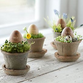 EASTER Collections Fresh Centerpieces at Terrain