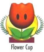 Flower Cup from the official artwork set for #MarioKart64 on the #N64. #MarioKart #Mario #Nintendo64. Visit for more info http://www.superluigibros.com/mario-kart-64