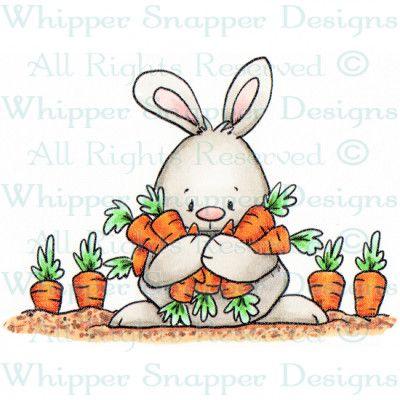 Carrot Hoarder