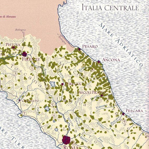 mmm.... Italian wines! #map #wine #italy $15