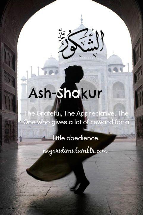 Ash-Shakur (الشكور)