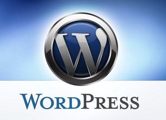 O WordPress é hoje o principal sistema de gerenciamento de conteúdo na Internet. Com essa plataforma, podemos criar blogs, páginas de captura, área de membros para cursos, páginas de vendas etc. Neste artigo vamos detalhar passo a passo como instalar WordPress em um site. http://empreendedordaeradigital.com/como-instalar-wordpress-em-um-site/