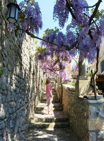 Kolocep Island #lobagolabnb #guest #house #mediterra #peljesac #trstenik #adriatic #Croatia #adventure #outdoor
