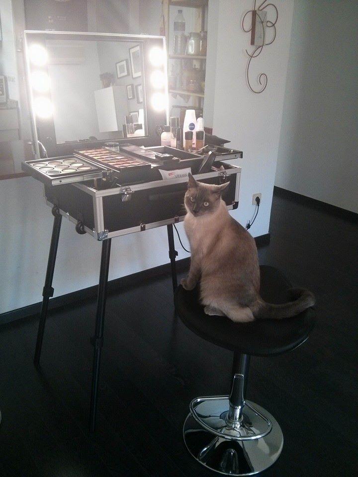 Also the cat...before the make up, he was totally white!:-)  From Natalia Taramazzo MUA #makeupstation #makeupcat #cantonifunny #nataliatamarazzo #MUA