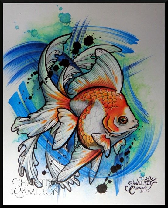 25 Best Ideas About Pencil Tattoo On Pinterest: 17 Best Images About (gold)fish On Pinterest