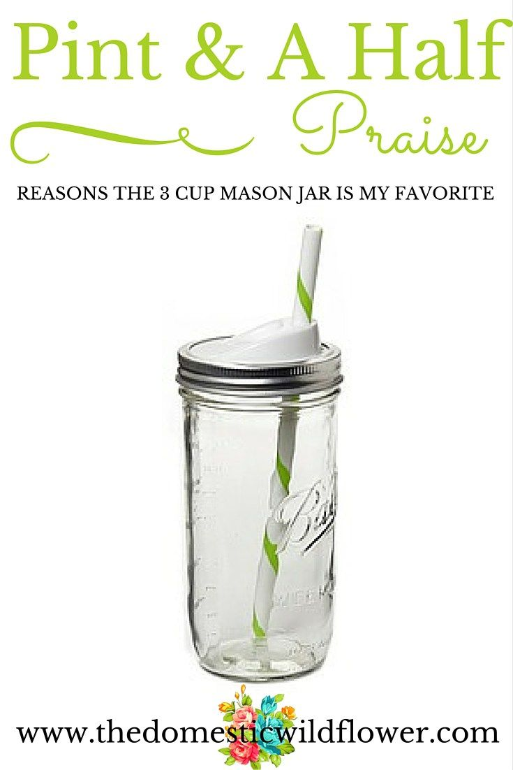 Praise for the Pint and a Half Jar | The Domestic Wildflower click to read why the new 3 cup mason jar is a modern girl's favorite!
