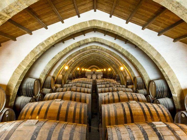 Day 2 - Prestigious wine cellar and wine tasting