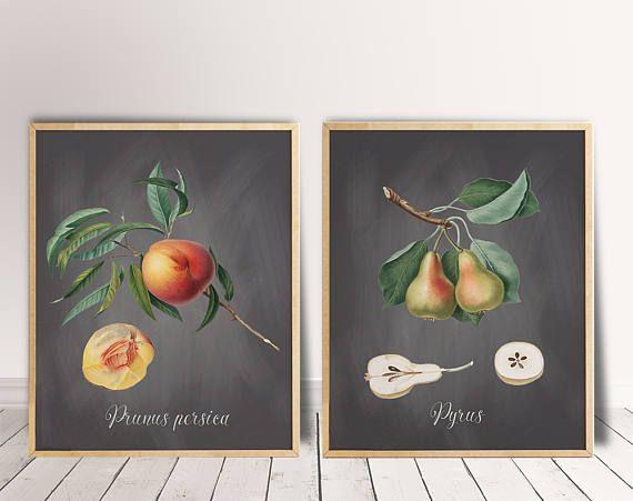 Botanical Art Set Kitchen Art Print Set Printable Poster