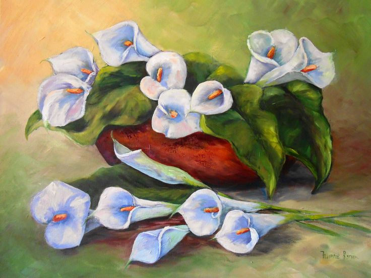 Calla lily - Flippie Botha