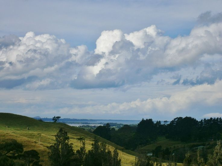 The rolling hills of New Zealand lead to the sea