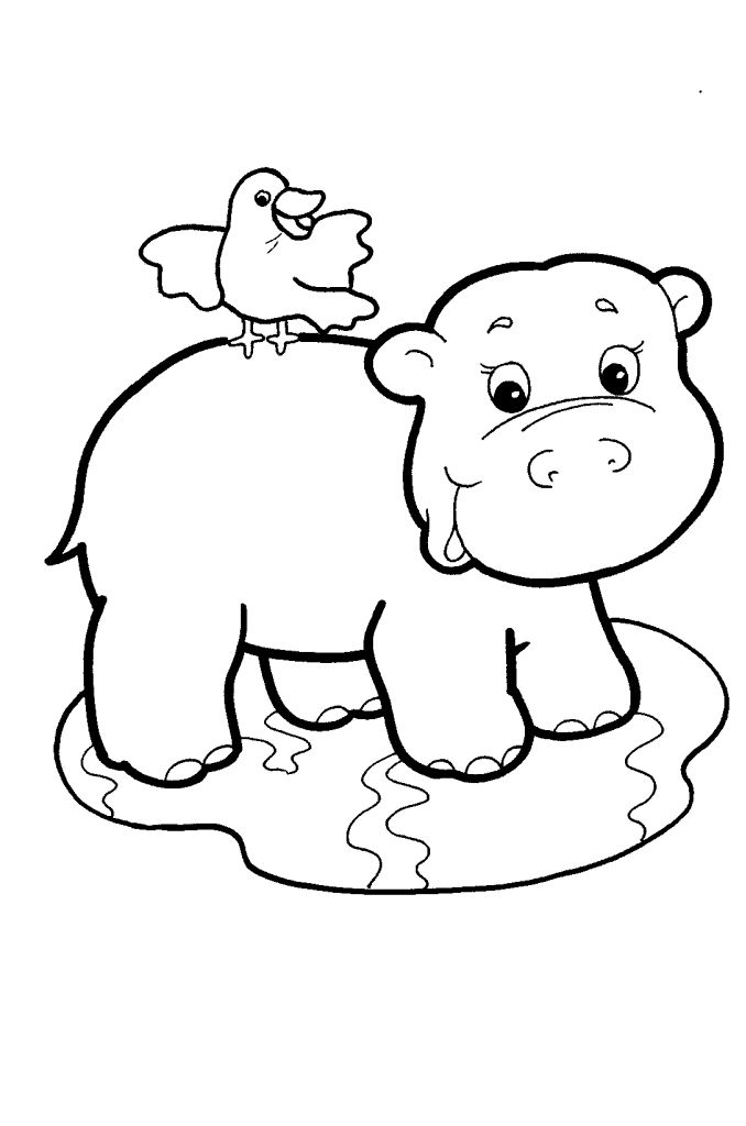 13 best images about hippo on pinterest coloring pages plush and baby hippo. Black Bedroom Furniture Sets. Home Design Ideas