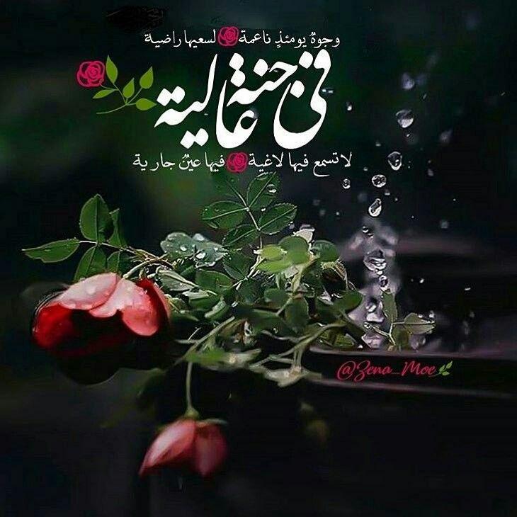 Pin By رحمة عبد الهادي On أجيب دعوة الداعي Islamic Images Islam Photo