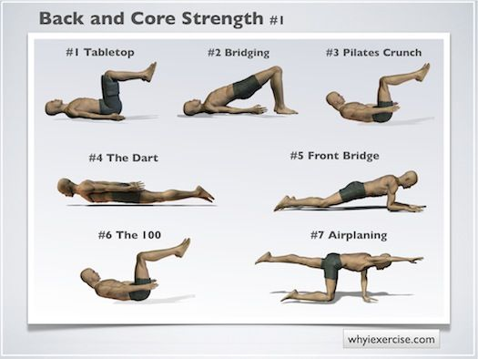 back strengthening exercises: support your spine