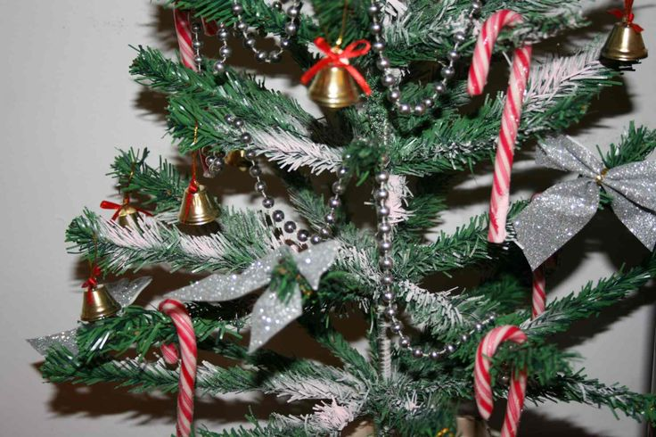 Special Moments At Christmas - News - Bubblews