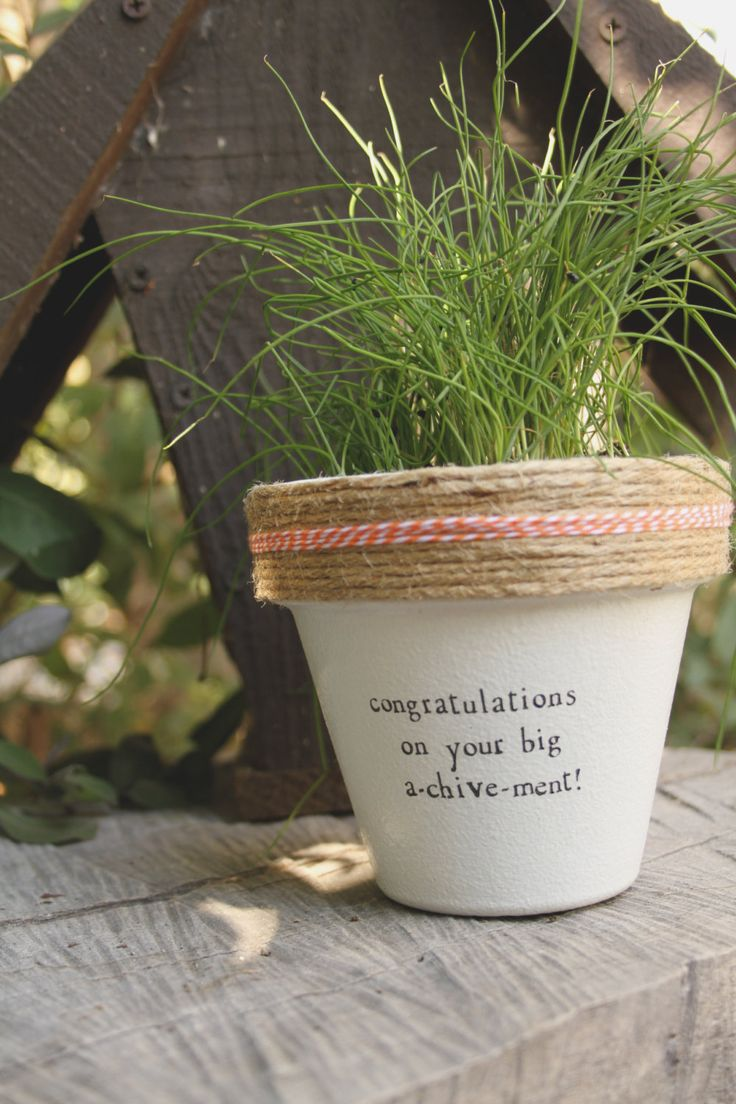 Congratulations on Your Big A-chive-ment! by PlantPuns on Etsy