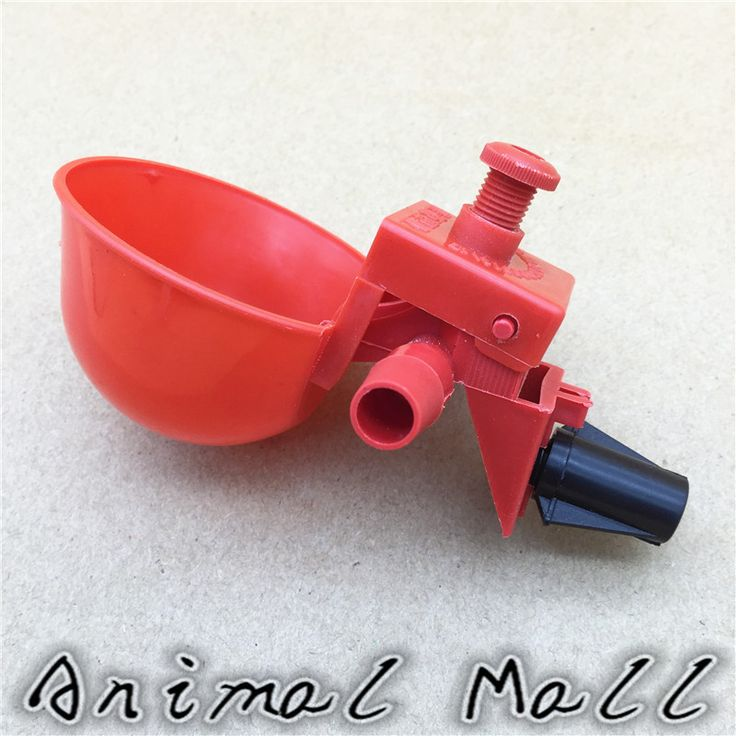 5 pcs Chicken drinking Cups Quail waterer bowls Bird red glass Animal husbandry tools Automatic Bird Coop Feeder Drinking Cups // FREE Shipping //     Get it here ---> https://thepetscastle.com/5-pcs-chicken-drinking-cups-quail-waterer-bowls-bird-red-glass-animal-husbandry-tools-automatic-bird-coop-feeder-drinking-cups/    #catoftheday #kittens #ilovemycat #lovedogs #pup