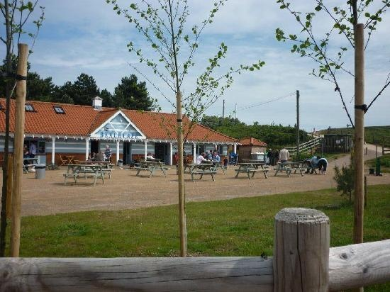 Photos of Beach Cafe, Wells-next-the-Sea - Restaurant Images - TripAdvisor